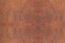 elephant_11-original-brown.jpg